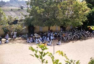 Class being held outside