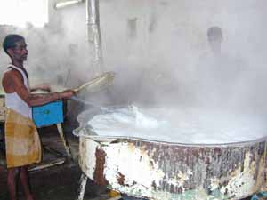 Milk is boiled to evaporate the water content and produce 'Cova' for sweet making.